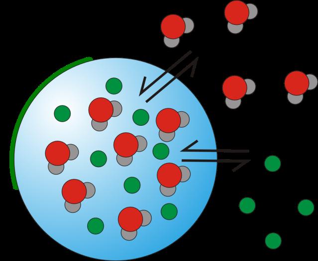 overview_properties2